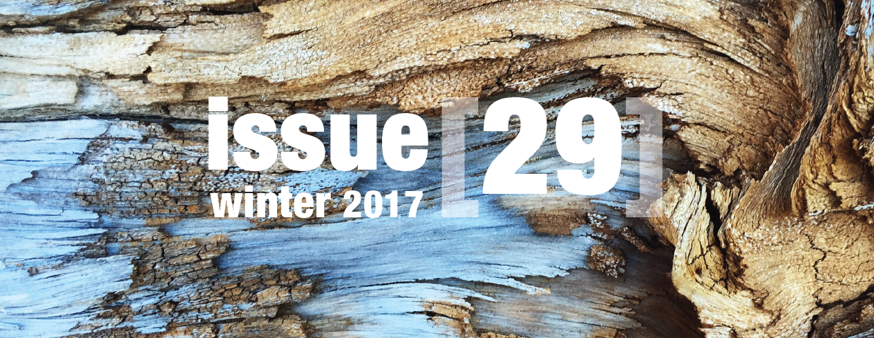 issue 29 sliders-01